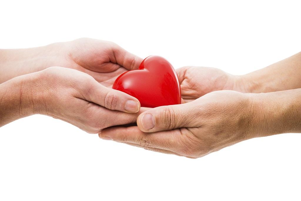 El Manejo del Paciente Donante de Órganos